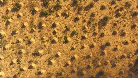 w453-97760-mound-field-2