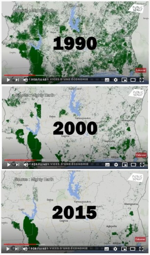 cacao-deforestation-cartes